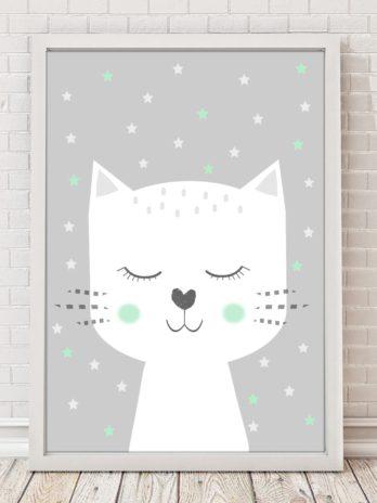 Plakat Kot w miętowych gwiazdkach